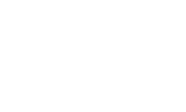 Logo MTZ Noir Records